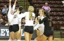 CofC Cougars Can't Hold Off Hofstra, Fall in Five